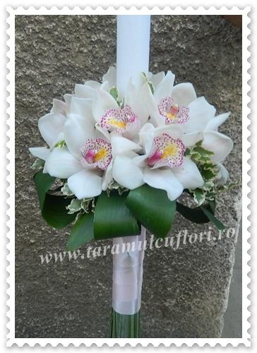 Lumanari de nunta din orhidee.3933
